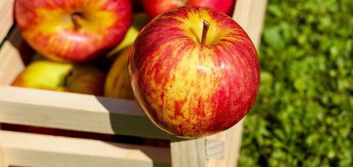 Jablká plné chuti a výživy