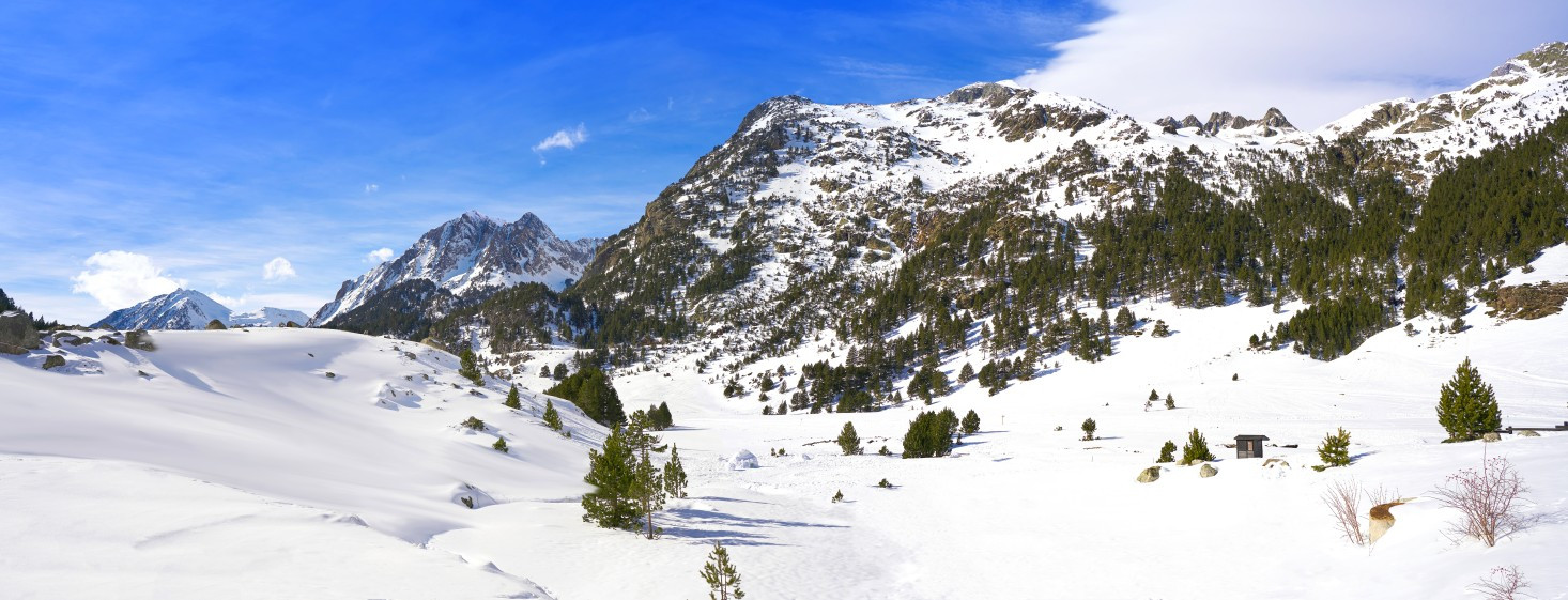 Beh na lyžiach - tréningová alternatíva v zime