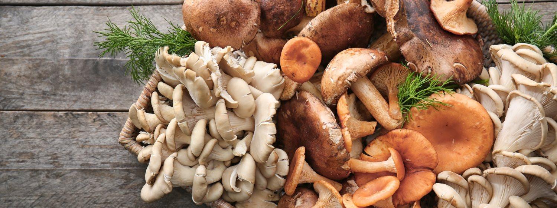 Čo ste (možno) netušili o čínskych hubách a ich účinkoch